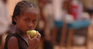 WHO urges governments to promote healthy food in public facilities